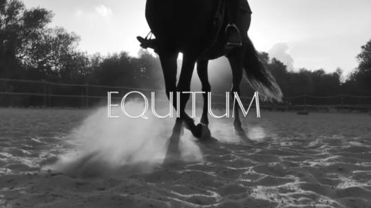 Son cavalls Equitum